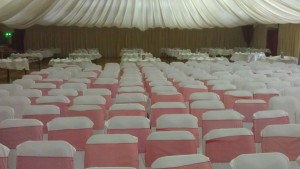 650 wedding chairs